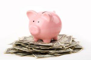 frugal living piggy